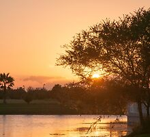Lakeset by Donna Adamski