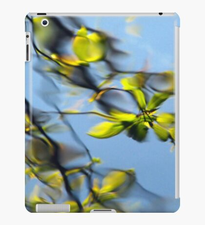 Reflections of the way life used to be iPad Case/Skin