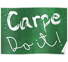 Carpe Do it! (green) Poster
