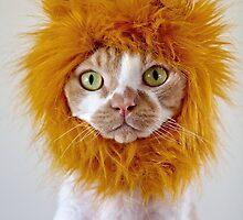 Lion Heart by SandraVee