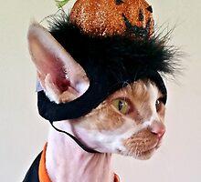 Halloween Head by SandraVee
