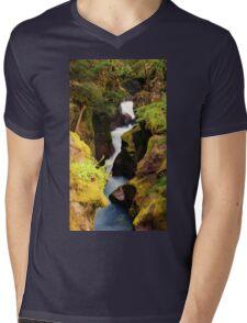 Avalanche Gorge Mens V-Neck T-Shirt
