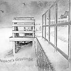 Season's Greetings ~ Greeting Card by Susan Werby