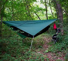 Hammock Campsite in the Mountains by koreanrooftop