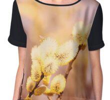 The willow with yellow spring catkins. Flying insects. Soft pastel background: yellow and beige Chiffon Top