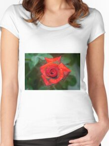 Digitally enhanced orange rose flower with green foliage background  Women's Fitted Scoop T-Shirt