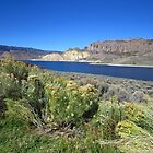 Blue Mesa Reservoir by lorilee