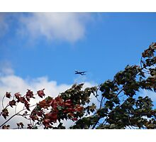 As the season flies by ('Leaf'ing below a jet plane) Photographic Print