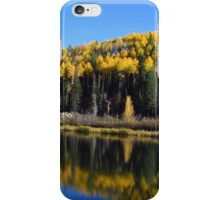 Aspen Reflections iPhone Case/Skin