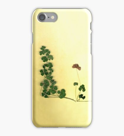 Golden Clover Dreams iPhone Case/Skin