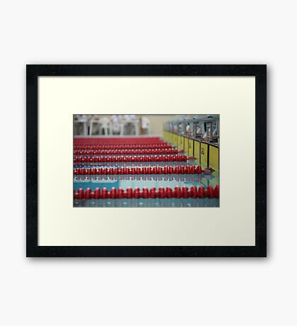 red swimming lane marker Framed Print