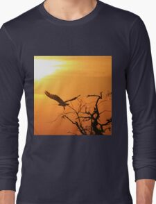 White-backed Vulture - Flying into the Sun. Long Sleeve T-Shirt