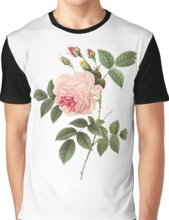 Pink rose lll Graphic T-Shirt
