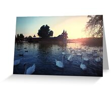 Sunset over the lake with swans. Beautiful view of the wooden house on an island on Lake Balaton Greeting Card