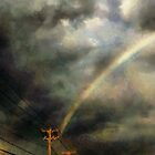 After the Storm by RC deWinter