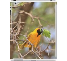 Golden Weaver - African Peace Symbol iPad Case/Skin