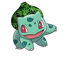 Bulbasaur Bud Photographic Print