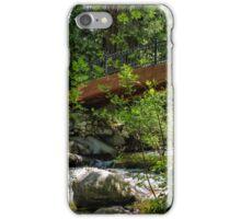 Ashland Creek iPhone Case/Skin