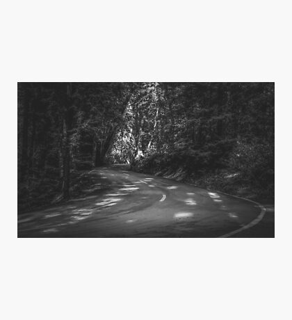 Road to nature on Highway 1, California, USA in black and white Photographic Print