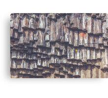 Svartifoss Waterfall in Iceland Canvas Print