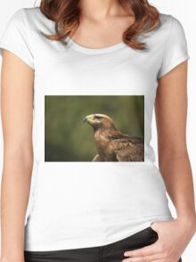 Close-up of sunlit golden eagle looking up Women's Fitted Scoop T-Shirt