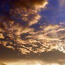 Breathing Dragon Cloud by Mui-Ling Teh