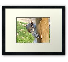 Peek-a-Boo! (Self Portrait in the Eye) Framed Print