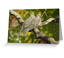 Sweethearts ~ A Pair of Doves Greeting Card