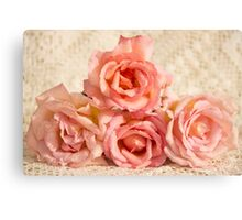 Pink roses with dew on lace Canvas Print