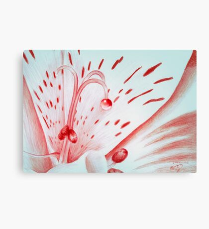 Drawing Day Red Bubble Nectar Canvas Print