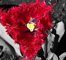 Is that really a tulip? by Glenn Bumford