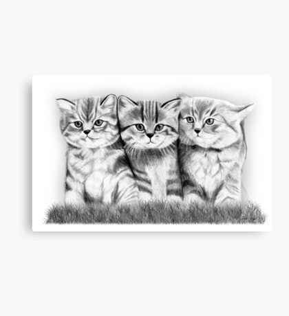 Pussy Cats Canvas Print