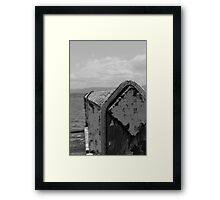 Age by the lake Framed Print