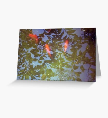 Swimming in Leaves Greeting Card
