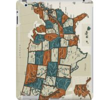 USA - Vintage Effect Map - Phone and Tablet Case iPad Case/Skin