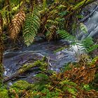 Anne's Cascades. by Bette Devine