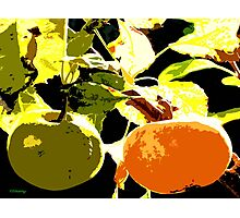 DAYS OF THE FRUIT Photographic Print
