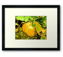 SUNSHINE IN THE ORCHARD Framed Print