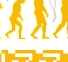 Puzzle Evolution Sticker