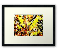 BURST OF SPRINGTIME YELLOW Framed Print