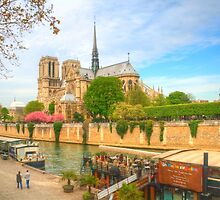 Notre Dame & the River Seine by Michael Matthews
