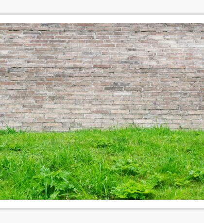 Old stone wall and green grass. Peaceful texture Sticker