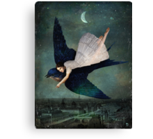 fly me to paris Canvas Print