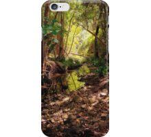 Bellbird Creek   Dungog Australia  iPhone Case/Skin