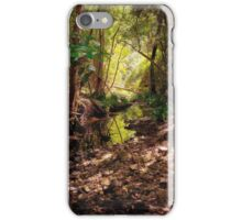 Bellbird Creek | Dungog Australia  iPhone Case/Skin