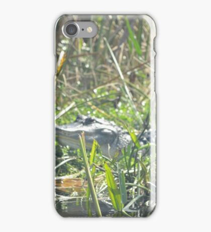 Florida Gator at Green Cay,  Florida  iPhone Case/Skin