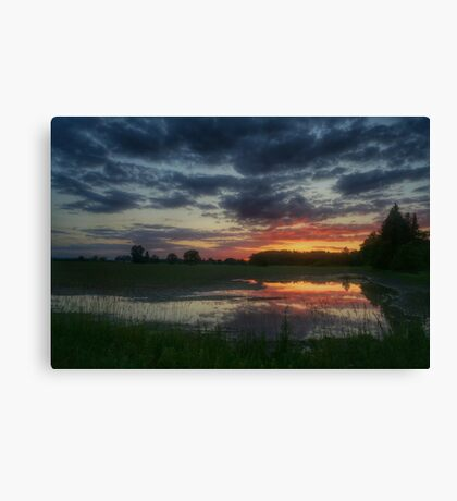 Puddle sunset Canvas Print