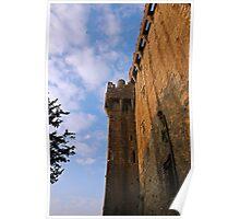Blarney Castle Wall Poster