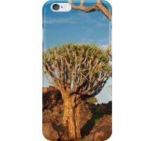Quiver tree forest, Aloe dichotoma iPhone Case/Skin