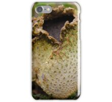 exploded iPhone Case/Skin